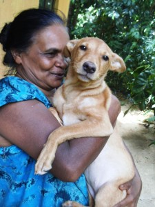 Lipton - with adopted mummy -- KACPAW looked after the provision of her supply of vitmins and vaccinations and spaying.